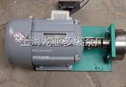 小流量导热油泵
