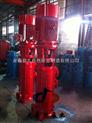 供应XBD4.0/45-150DL×2喷淋增压消防泵 单级多级消防泵 北京多级消防泵