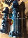供应100DL*2高杨程多级离心泵 立式不锈钢离心泵 多级清水离心泵