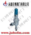 A61Y焊接式高壓安全閥