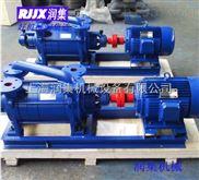 2SK系列水环真空泵