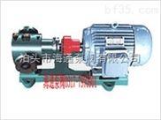 2CG高溫齒輪泵,KCG防爆齒輪油泵