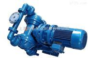 上海哪个生产厂家的电动隔膜泵Z好?