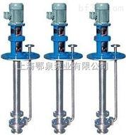 FY不锈钢液下泵,立式耐腐蚀液下泵