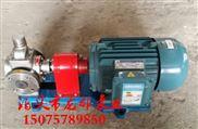 YCB-25/0.6型圆弧齿轮泵 现货批发