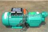 自吸螺杆泵,自吸螺杆电泵